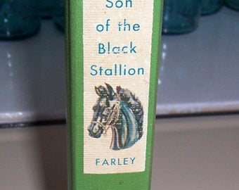 Horse Book, Son of the Black Stallion by Walter Farley