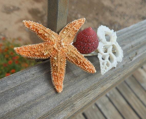 Sugar Starfish Barrette with Seashell Slice and Strawberry Shell