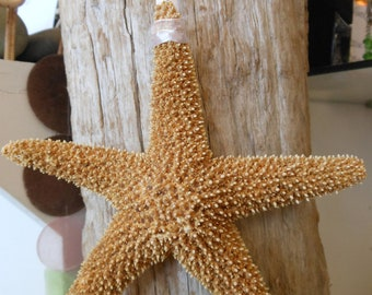 Beach Decor Ornament - Starfish Ornament - Coastal Christmas - Coastal Ornament - Beach