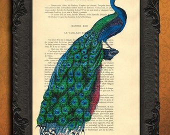 peacock art print peacock wall art blue peacock dictionary art print