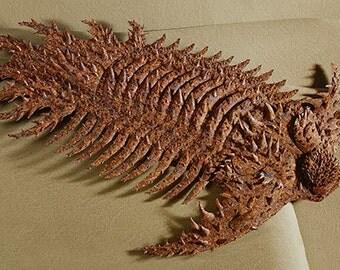 Blank Card - 'Trilobite: Terataspis grandis' - Paper Sculpture, Print