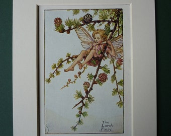 Larch Tree Fairy By Cicely Mary Barker, 1923 Print - Flower Fairies Of The Spring - Matted Ready To Frame - Faerie - Nature - Pixie - Garde
