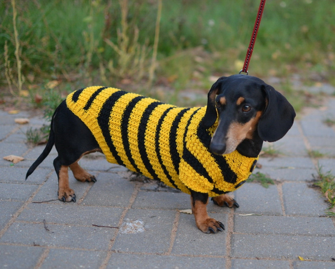 Dog Sweaters For Large Dogs Dog Clothes Dog Sweater Bee