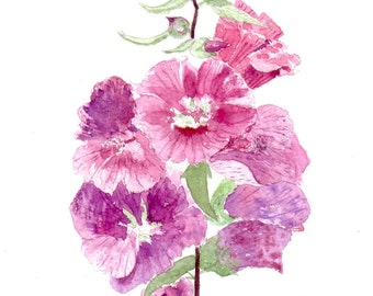 Lavatera Flower Watercolor Cards