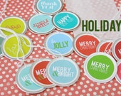 Holiday Christmas Gift Tag Present Package Labels (15) Set of 15 Small Round Tags . Metal-Rimmed Colorful .  Christmas Birthday Thank You