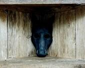 Black Horse mask Paper Mache Handmade from Scratch