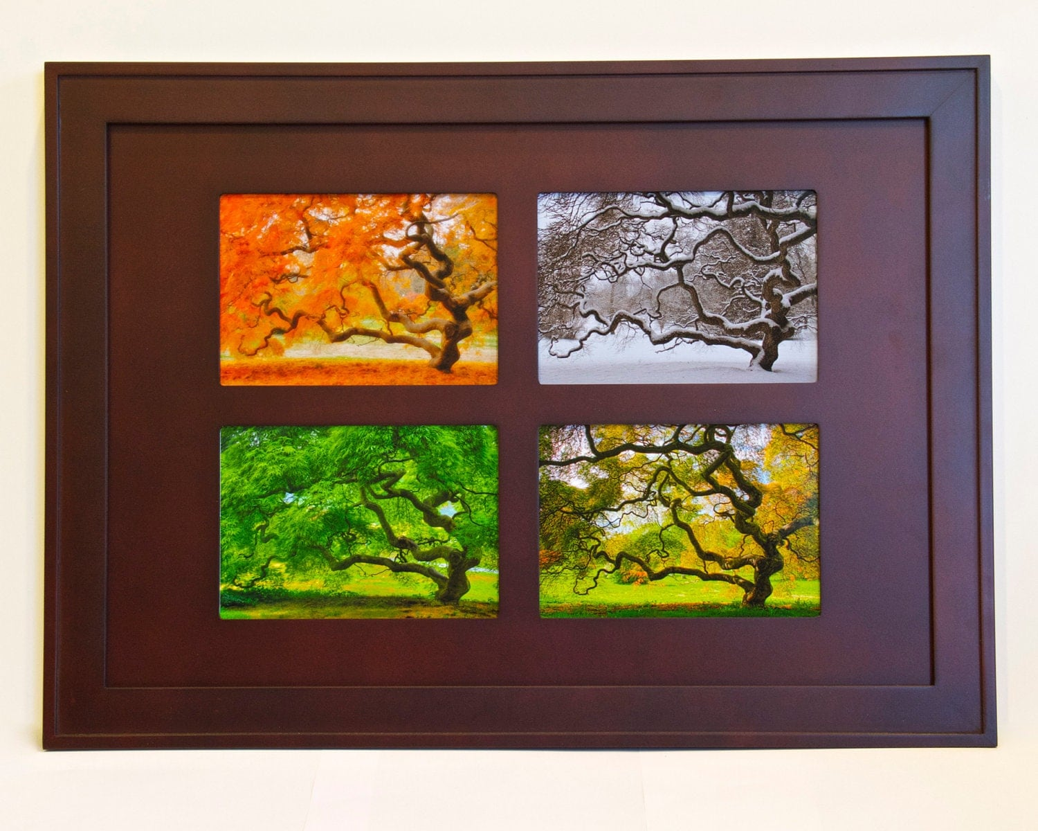 Japanese maple tree in four seasons framed art wall for 4 season decoration