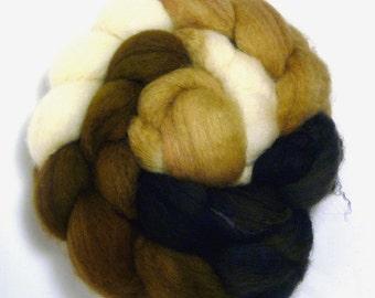 Handdyed BFL Wool Roving - Snowshoe - black, brown, white