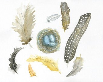 watercolor painting feathers and a nest watercolor painting archival print