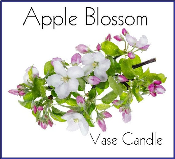 Apple Blossom Vase Candle Refill - Scented, Soy, Paraffin Wax, Paper Core, Self-trimming Wick, Refillable Vase, 50 Hour Burn Time Each