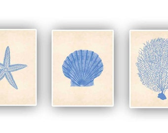 Set of 3 Print 8x10,  Collection sea creatures coral sea fan, starfish, scallop  Nautical Art, Decorative beach cottage decor