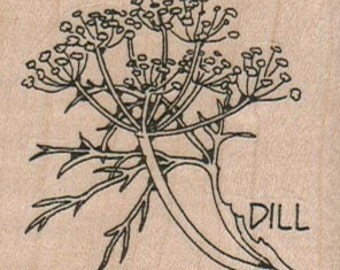 Rubber stamp mounted Dill plant  herb stamp   number 10066   plant