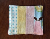 Apple and Pear Fabric Coasters