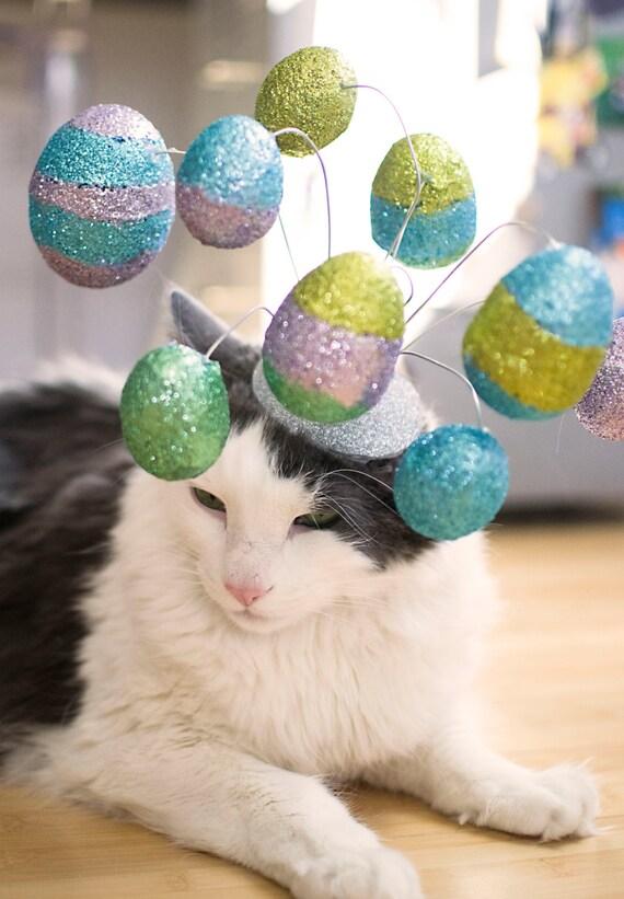 Easter Cat Hat / The Easter Egg Hunt Cat Fascinator