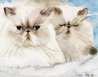 Persian Cat Art Print of my Watercolor Painting
