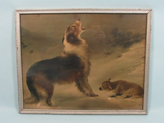 "Vintage Collie Dog and Lamb Framed Print by Walter Hunt ""Found By A Friend"""