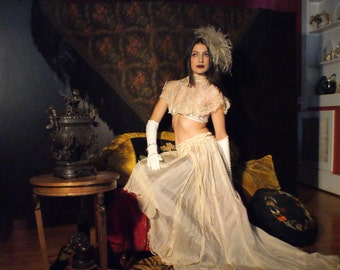 Edwardian Tissue Silk Skirt