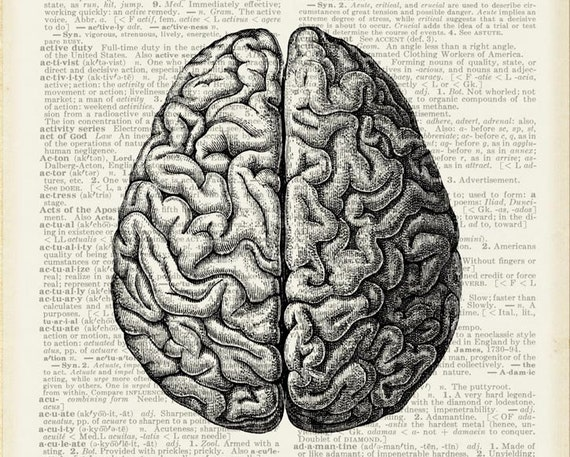BRAIN - your perfect brain print