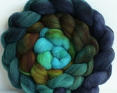 Hand Dyed gradient roving for spinning or felting  Tui  3.5ozs Pre-Order
