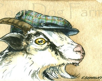 ACEO signed PRINT - A Dapper Goat in a Hat