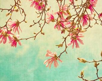 Magnolia Print, Flower Photography, Pink Turquoise, Flower Bedroom Decor,  Floral Art. Fine Art Photography