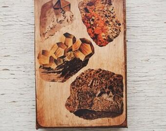 Vintage Rock & Minerals Specimens - Collection   C 4x6