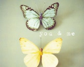 Butterfly photography, kids wall art, pastel yellow, green, blue, butterfly wall art, typography, nursery decor, love message - You and Me