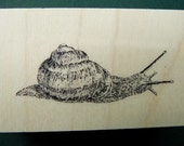 Snail rubber stamp  P29
