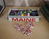 Repurposed Maine License Plate Tray - Rustic Storage Box - Planter - FREE SHIPPING