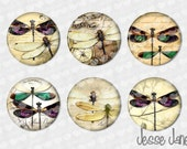 DRAGONFLY Art -set of 6 pin back buttons, flatbacks,magnets or Toppers - please specify at checkout - magnets fit Magnabilities