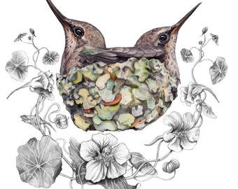 Twin Hummingbirds in a Lichen Crusted Nest
