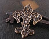 Fleur de Lis antiqued brass stamping