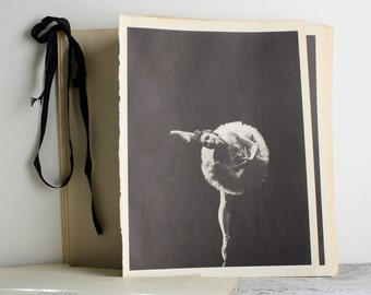 Vintage Ballerina Print - Book Plate - Tatiana Stepanova - Aurora's Wedding