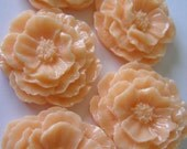 Reserved order Pretty Peach Large Poppy Flower Cabochon 42 mm 10 pieces