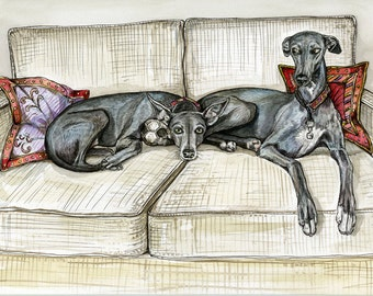A Little Envy - Whippet Art Dog Print