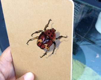 Bug Book, Painted Moleskine Pocket Journal,Insects