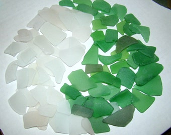 50 / 50 Green and White GENUINE SEA GLASS Collection for crafts Lot of 100