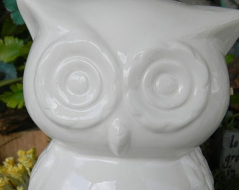 OWL Bank White  Retro Modern Ceramic Owl Bank   Vintage Design   - Ready to ship items in my shop