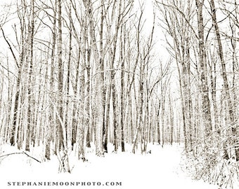 Winter Trees Landscape Black and White Photography, Winter Home Decor, Snowy Forrest Path Fine Art Photography