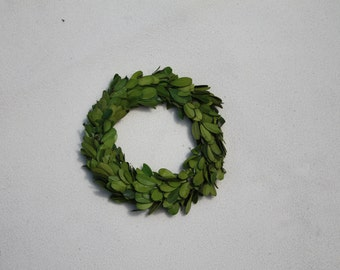 Boxwood Wreath 6 Inch