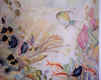 Coral Reef Fish Print, 1930 Vintage illustration - West Indian Coral Reef, vintage wall art