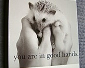 All Occasions Hedgehog Card - Charitable Item