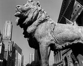 Chicago Art Institute Lion: Black and White Photo