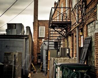 Royal Oak Alley Fine Art Photograph on Metallic Paper