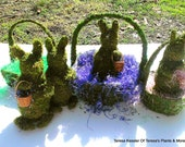 Moss covered Rabbit-Easter Bunny-Rabbit sculpture-Preserved Moss-