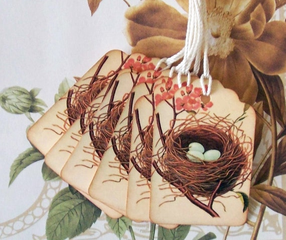 Tags Vintage Bird Nest Eggs Gift Tags Price Tags Wish Tree Party Favor Treat Bag Tag T053