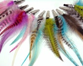 Clip-on Feather Extension 10 Pack - assorted colors