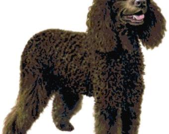 Irish Water Spaniel Dog Counted Cross Stitch Pattern