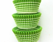 Lime Green Horizon Stripe Cupcake LIners (50)
