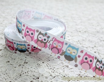Grosgrain Gift Ribbon - Printed Lovely Standing Colorful Baby Hoot Owls (W2.5CM, 1 Yard)